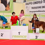 Allievi-Junior-Handler
