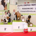 Gruppo-4
